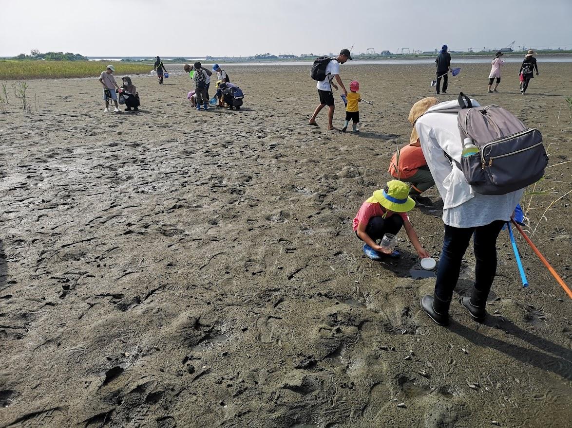吉野川干潟で生き物観察会と。。♪